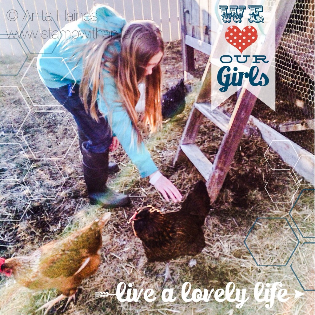 Live a Lovely Life... raise chickens
