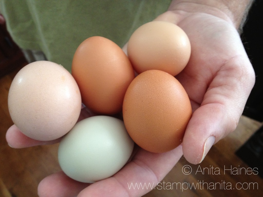 handful of eggs