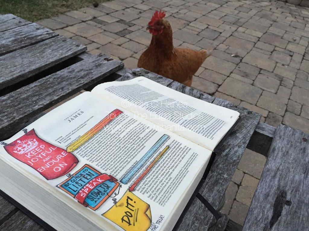 ChickenWatchingOn.www.stampwithanita.com