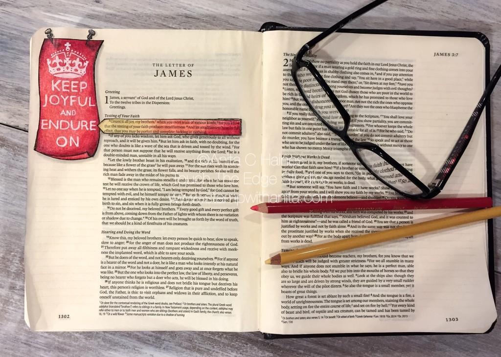 James1:2-3.www.stampwithanita.com