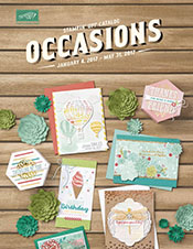 2017_Occasions_www.stampwithanita.com